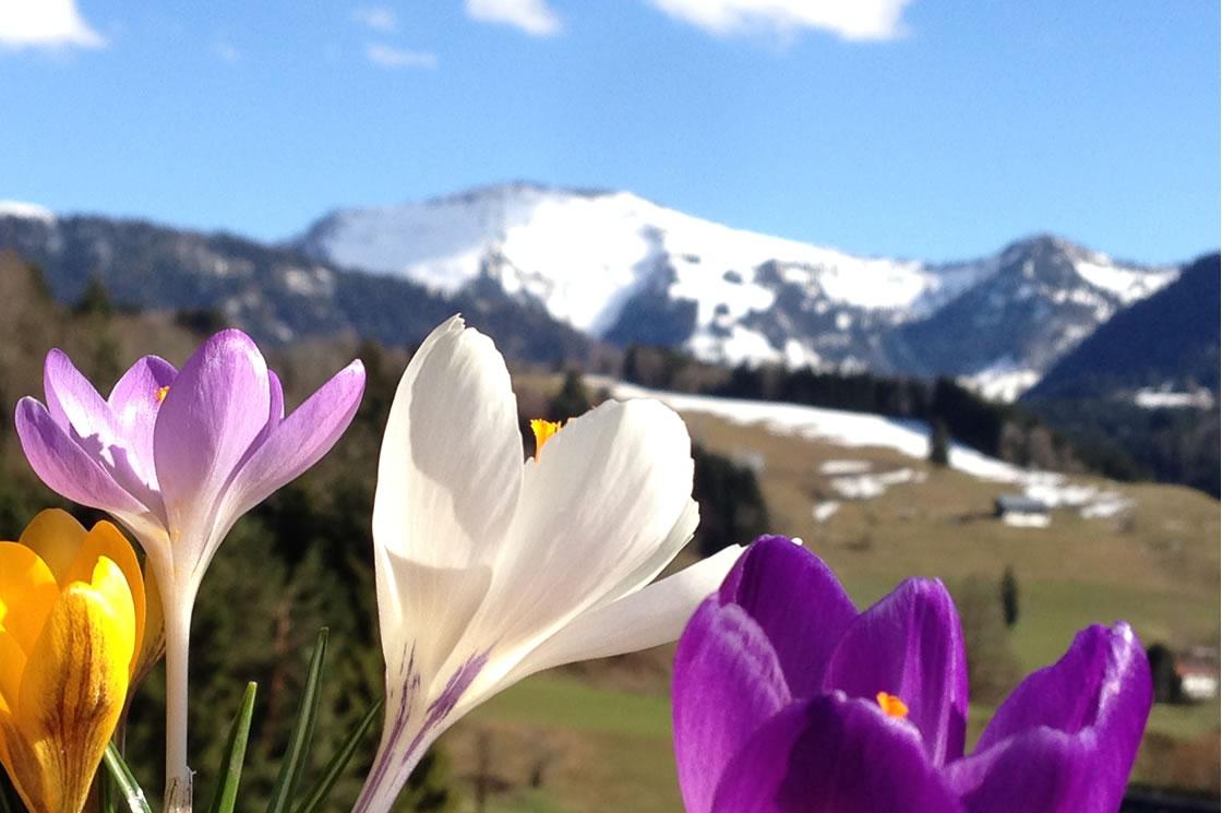 Oberstaufen Urlaub im Frühling in den Bergen