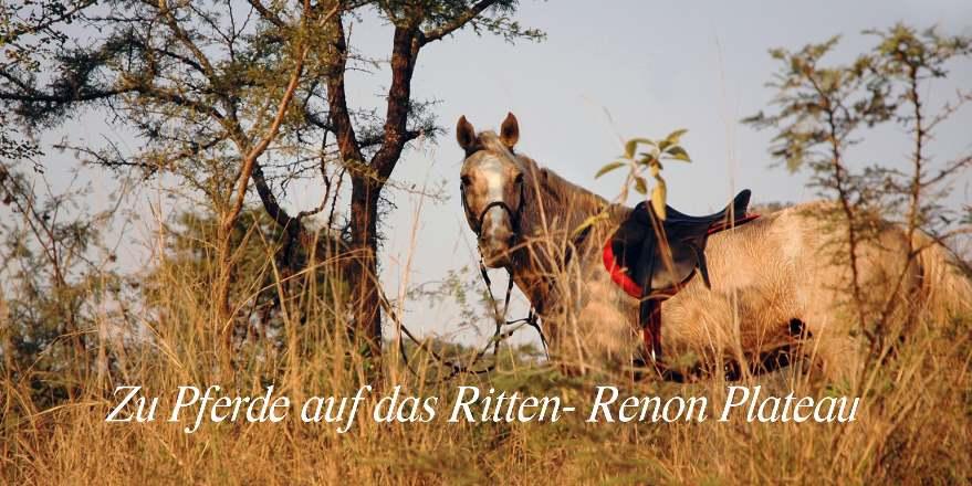 Zu Pferde auf das Ritten- Renon Plateau