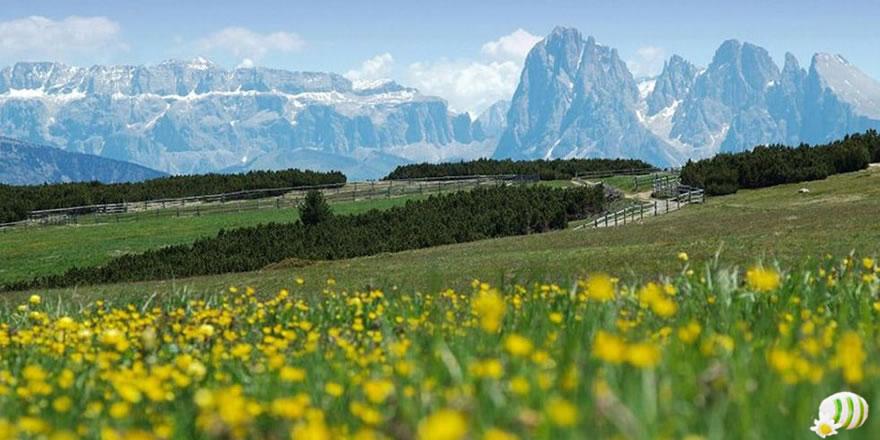 Ostern Frühlingssonne Südtirol