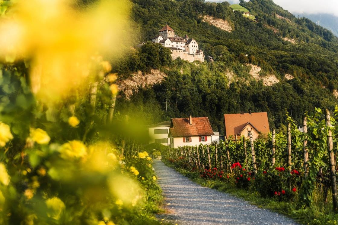 wandern Liechtenstein Weg