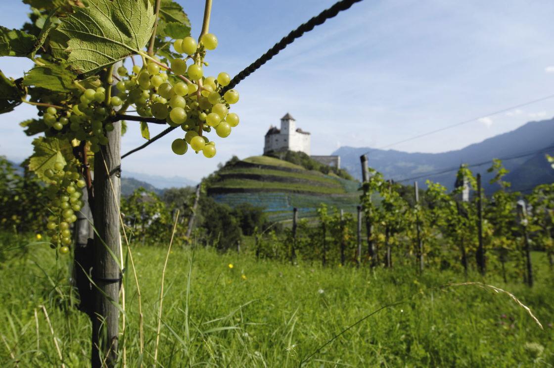 Weinfeste in den Alpen