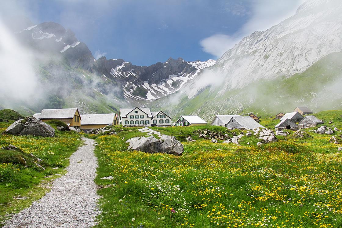 Schweizer Käse, Schaukäsereien in der Schweiz
