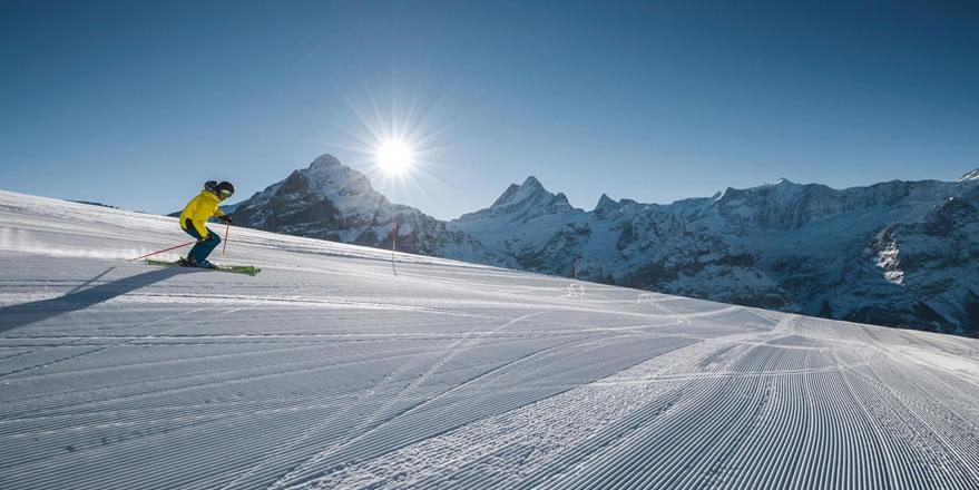 skifahren_schweiz_hotel_belvedere_grindelwald