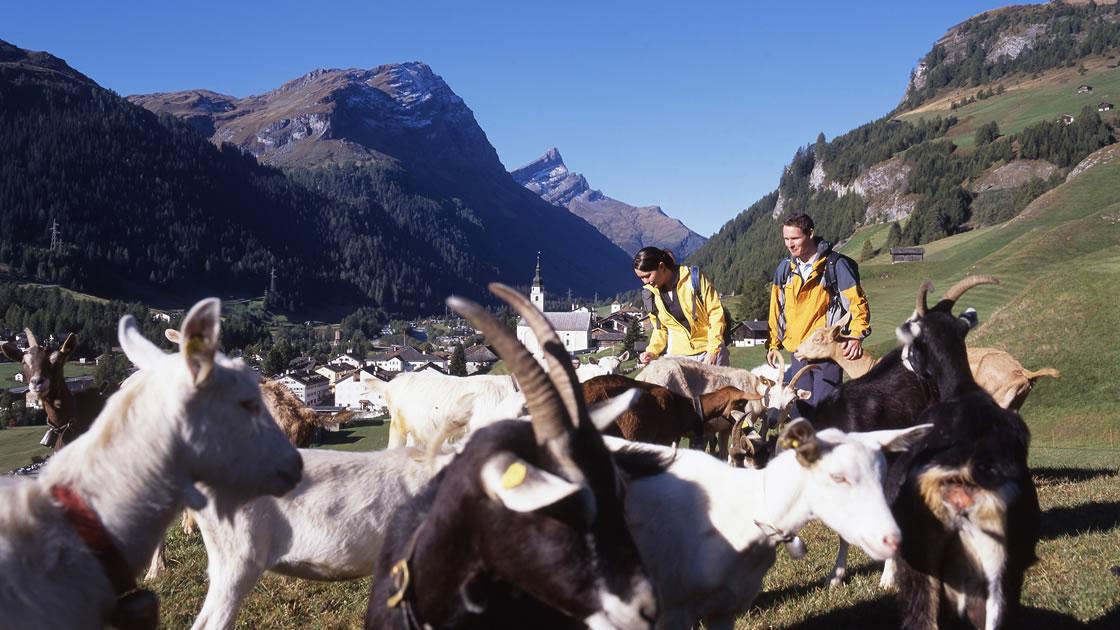 Herbstferien in Graubünden_Wandern