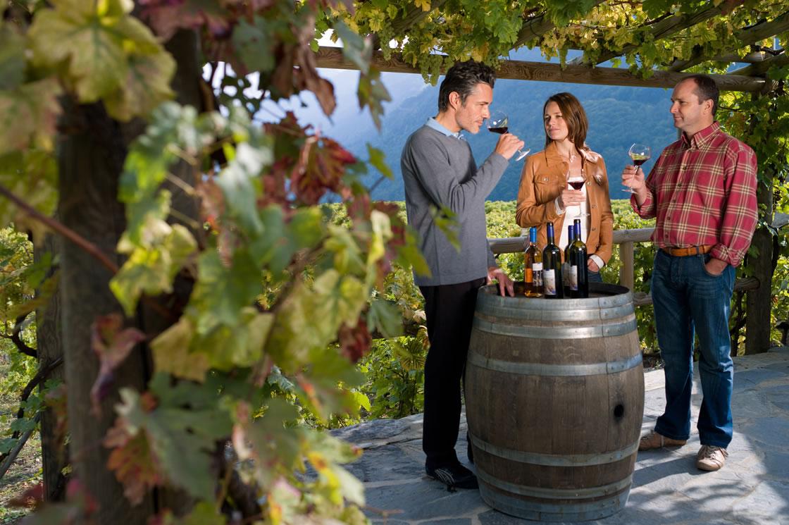 Weinwandern in der Schweiz