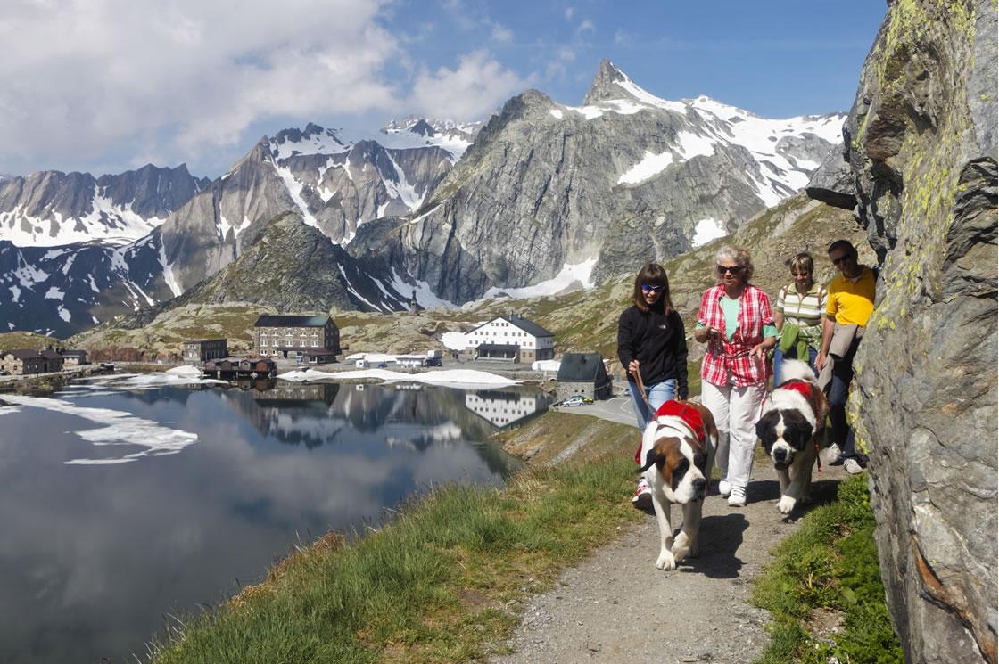 Wandern in der Schweiz_Großer Sankt Bernhard Pass