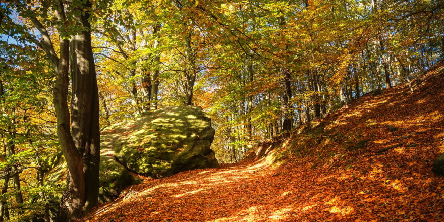 Herbsturlaub in Slowenien, Kranjska Gora