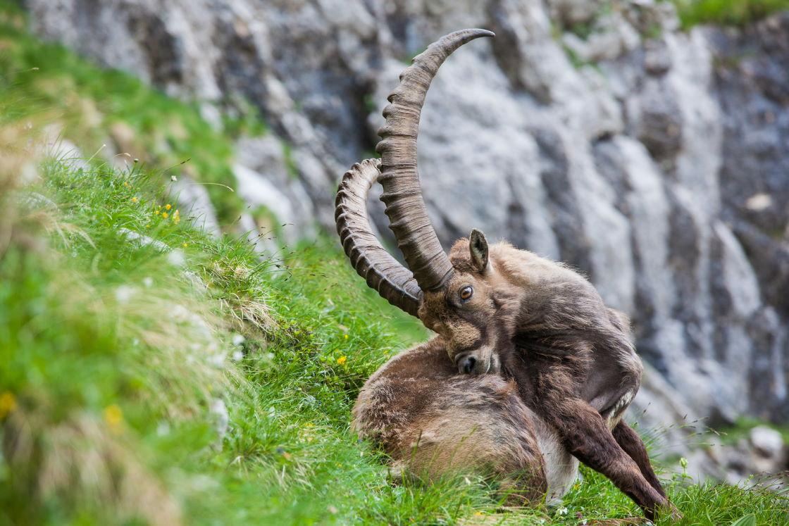 Urlaub Sloweninen im Triglav Nationalpark