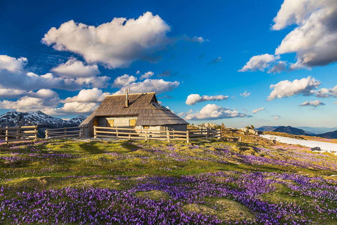 Blick auf die Hütte von Velika planina