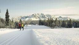 Langlaufregionen in der Steiermark