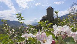 Südtiroler Schlösser besichtigen_Dorf Tirol